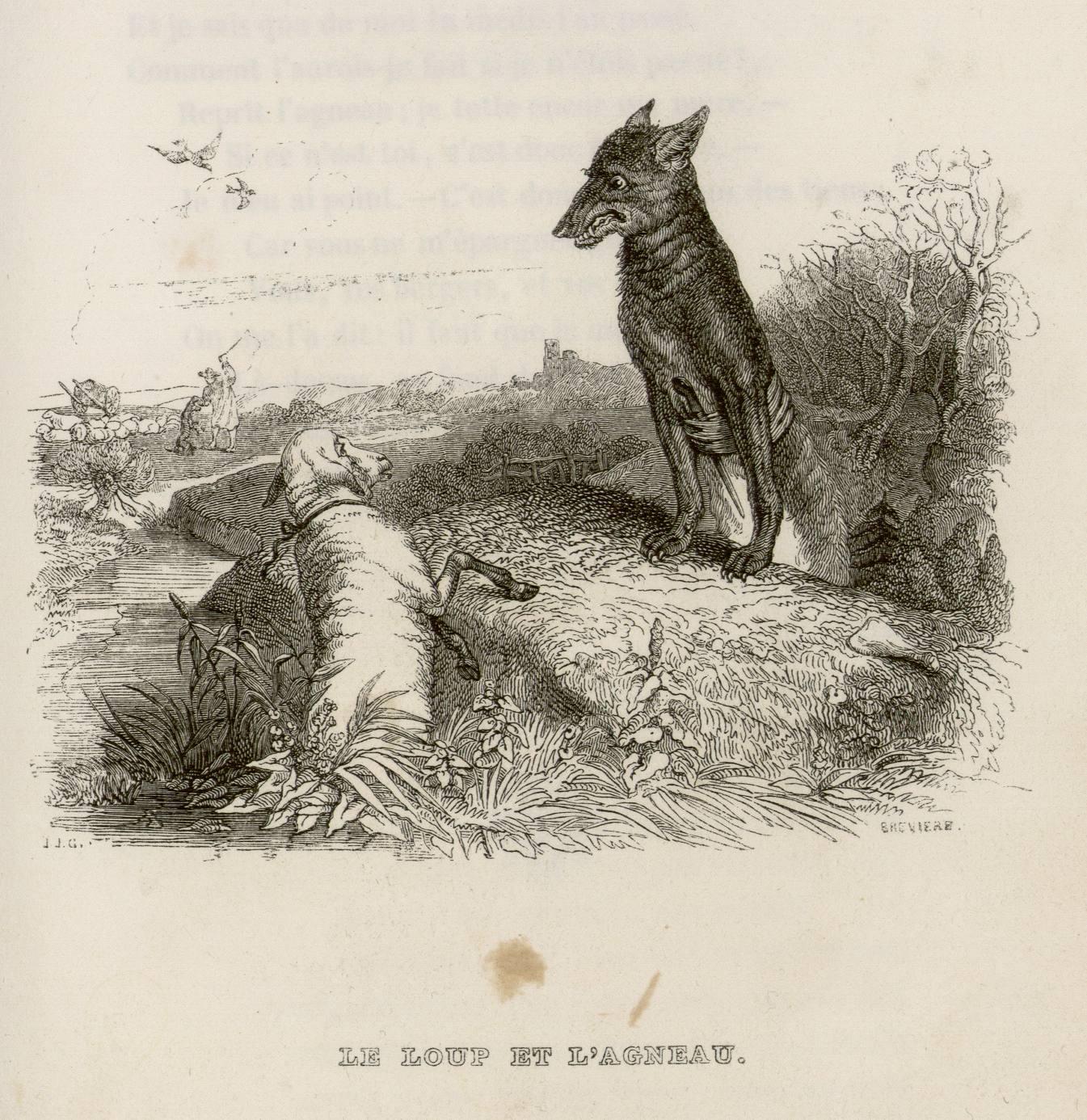 Contenu du Le loup et l'agneau