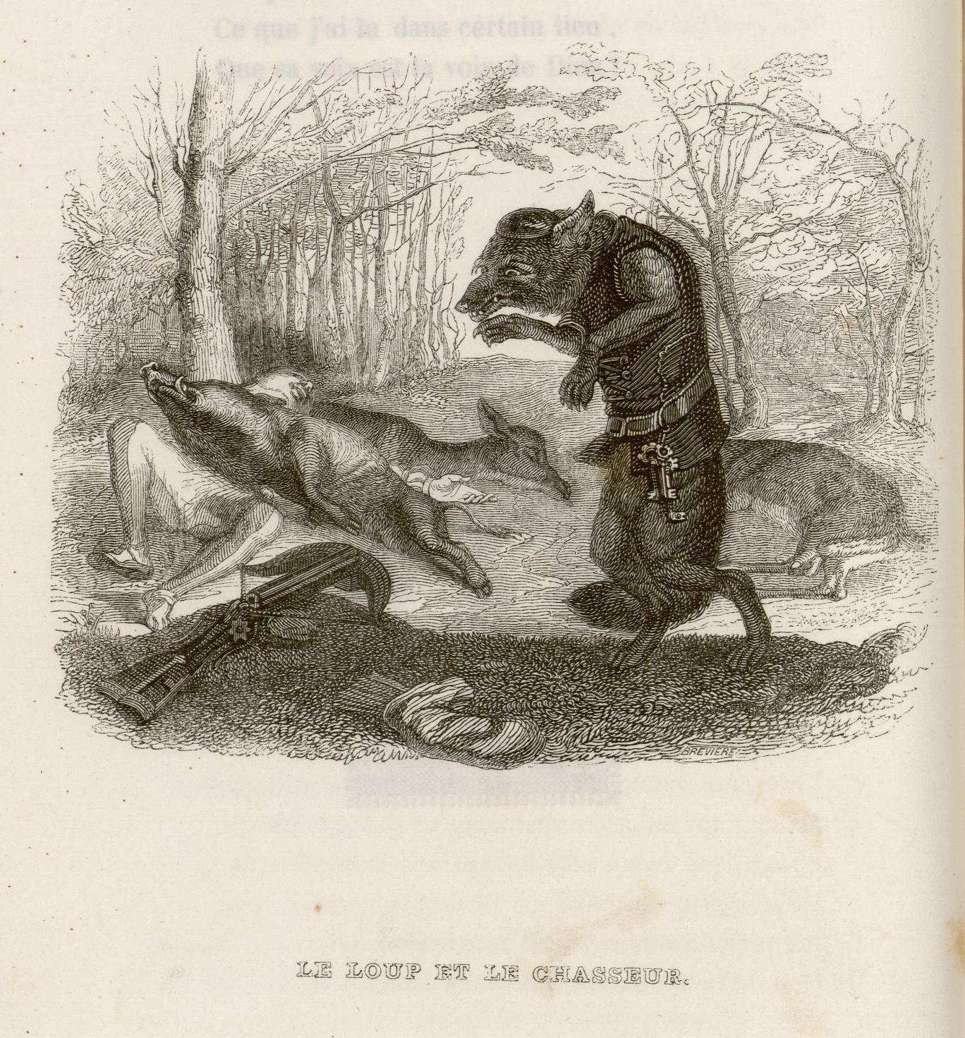 Contenu du Le loup et le chasseur