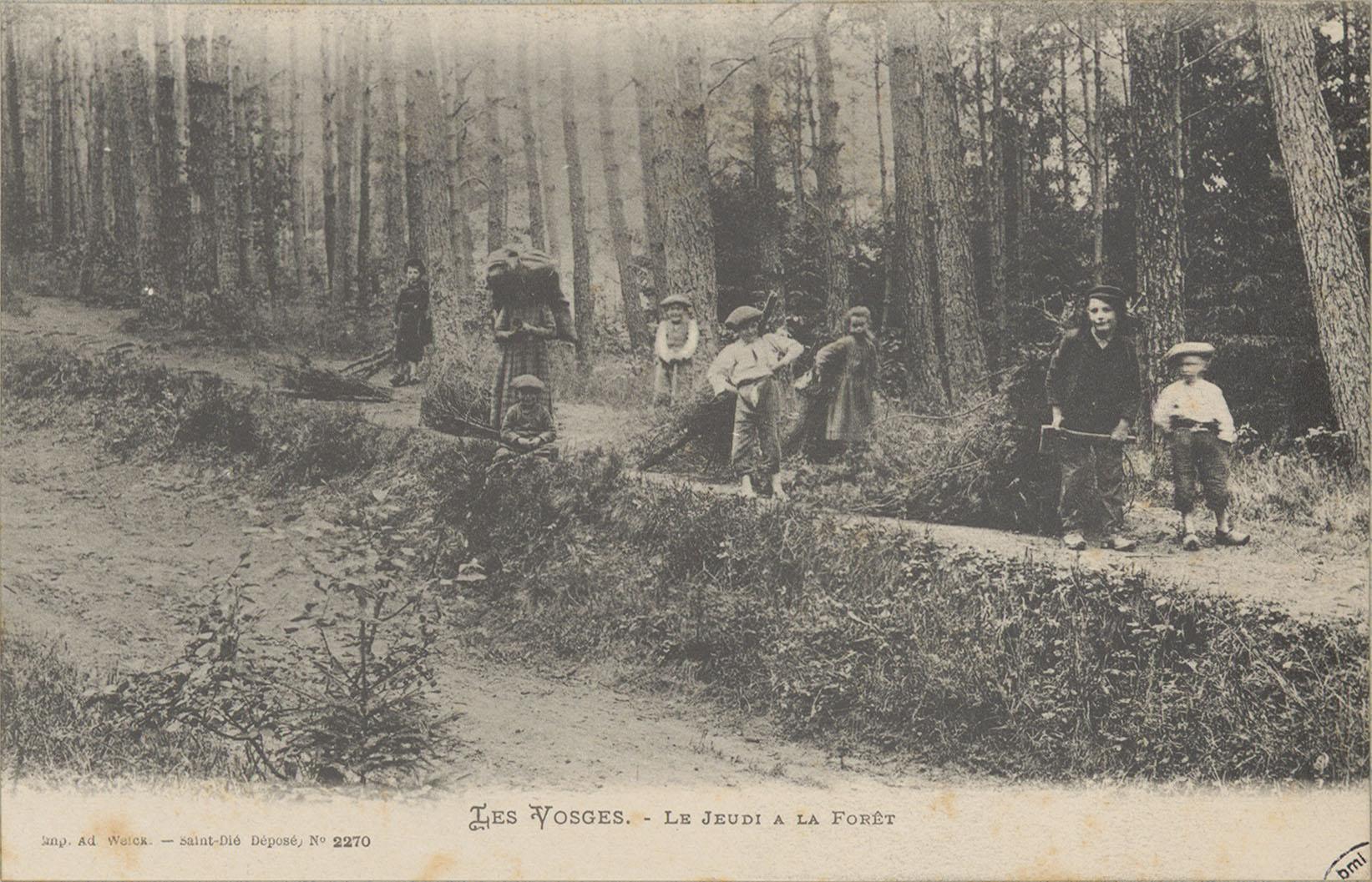 Contenu du Le Jeudi à la forêt