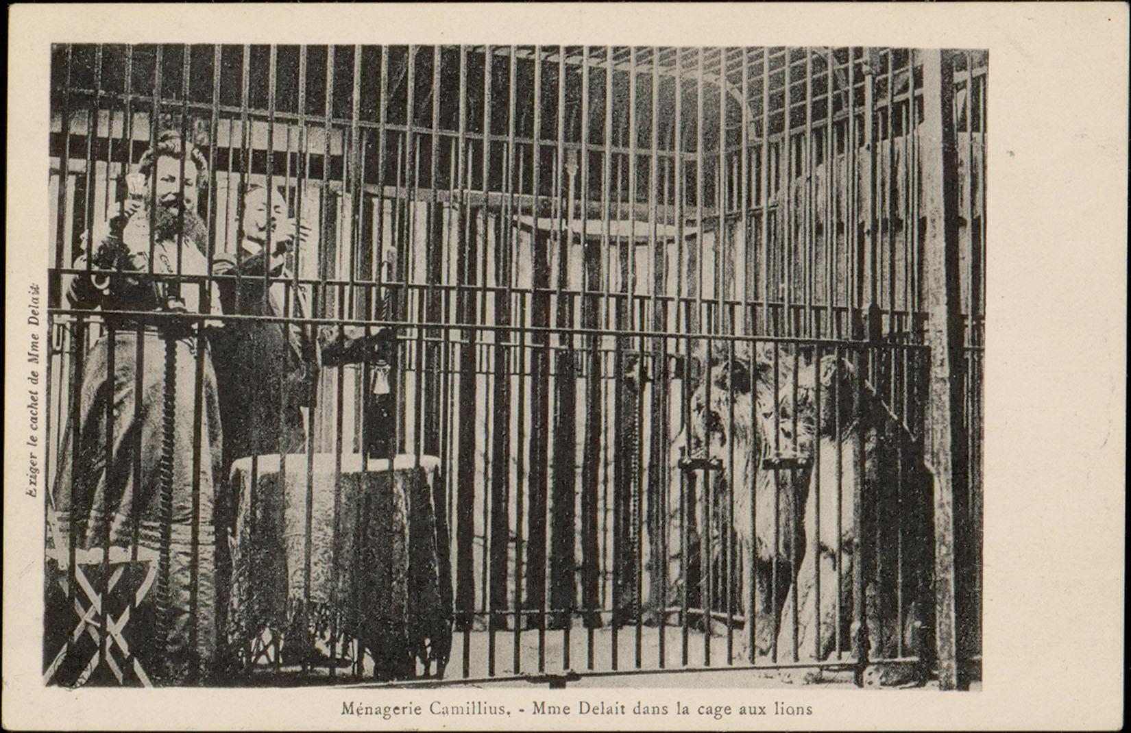 Contenu du Ménagerie Camillius, Mme Delait dans la cage aux lions