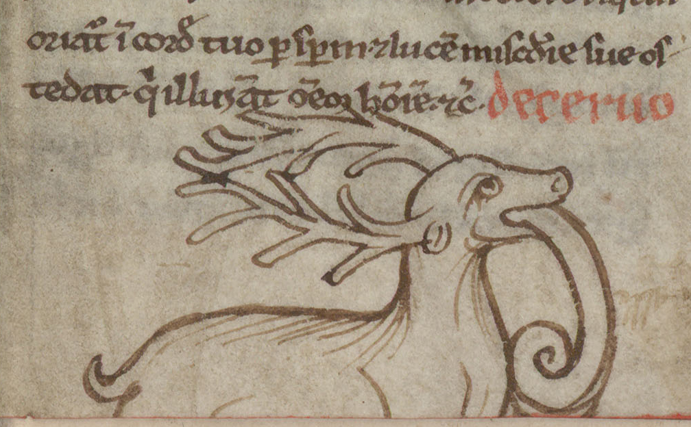 Contenu du Cerf dévorant un serpent