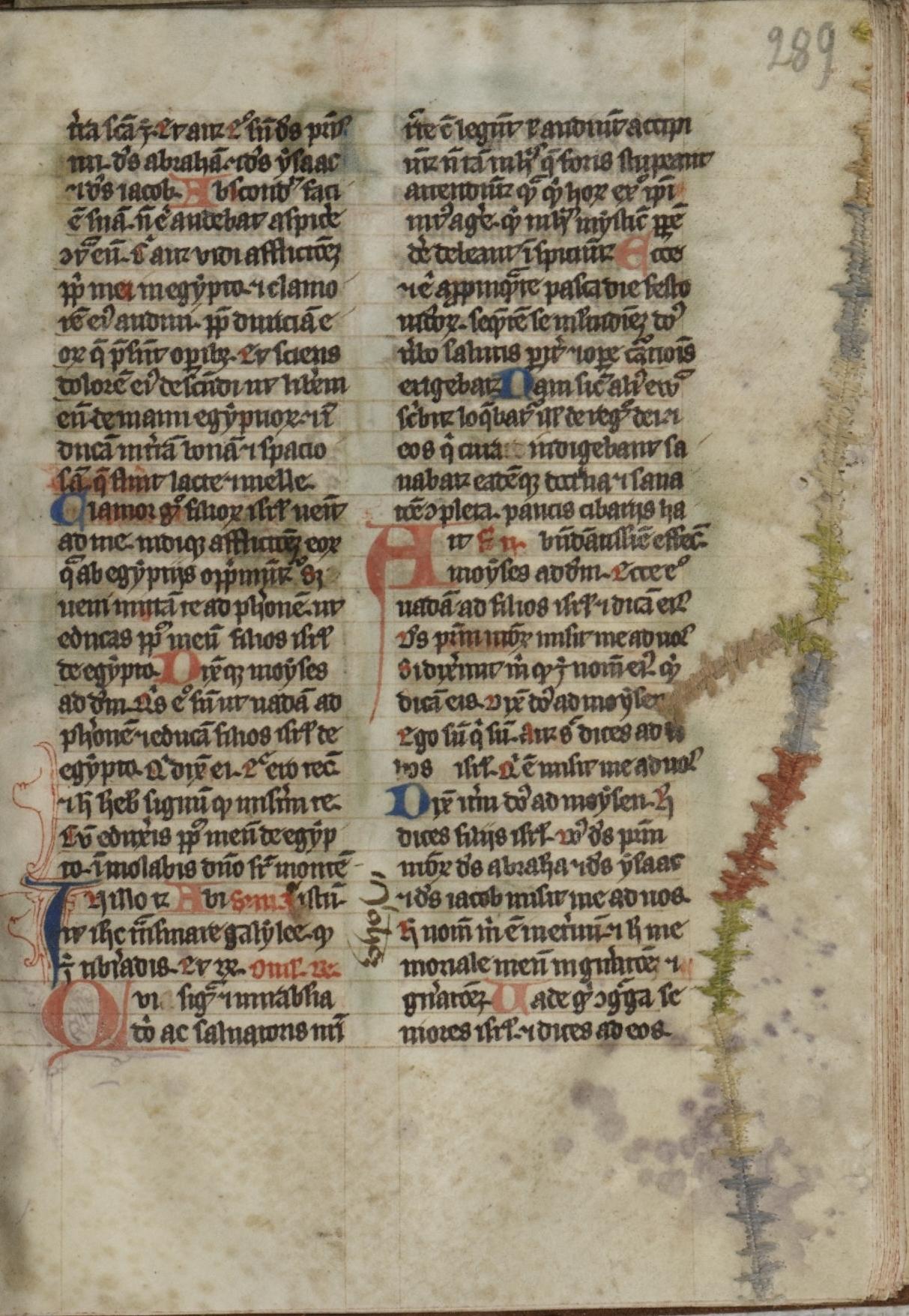Contenu du Détail de broderie (Bibliothèques-Médiathèques de Metz, f. 289)