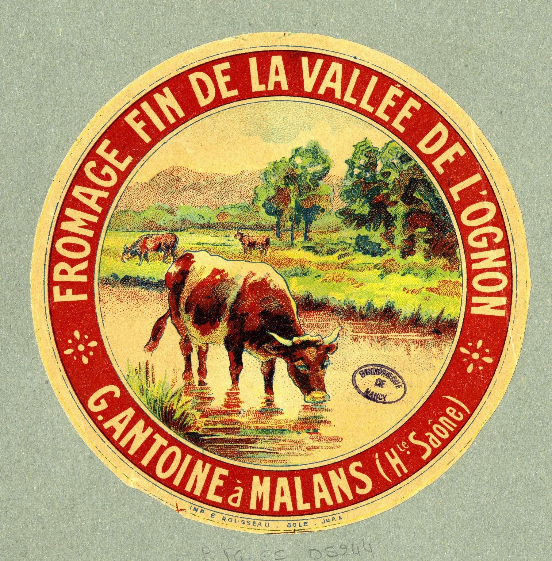 Contenu du Fromage fin de la vallée de l'Ognon