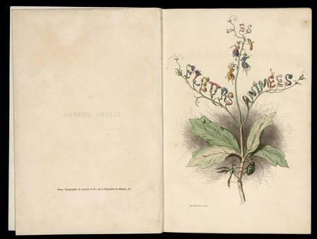 Les fleurs animées. Deuxième partie. Botanique des dames. Horticulture des…