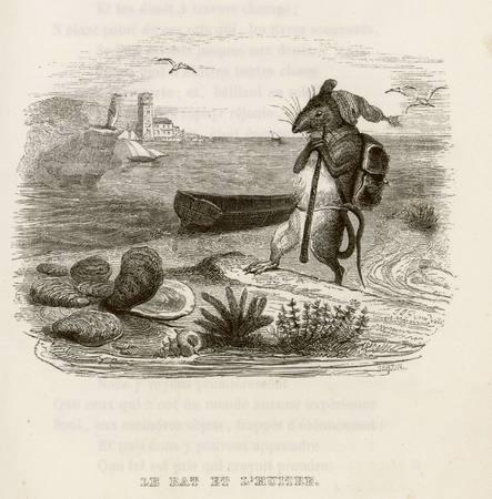 Le rat et l'huître