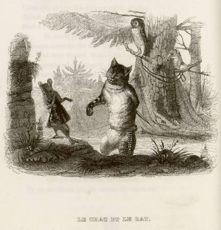 Le chat et le rat