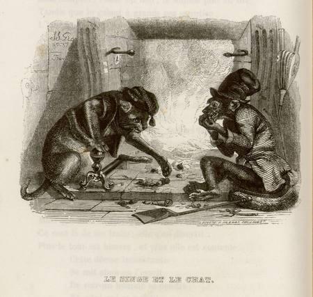 Le singe et le chat