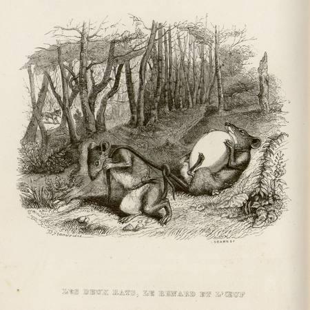 Les deux rats, le renard et l'œuf