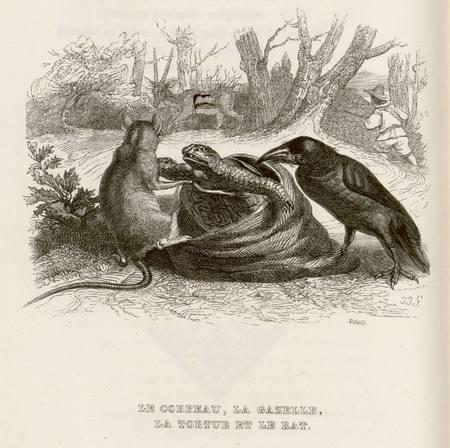 Le corbeau, la gazelle, la tortue et le rat