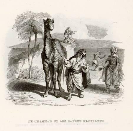 Le chameau et les bâtons flottants