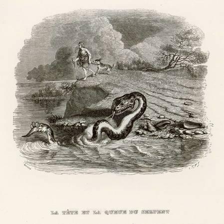 La tête et la queue du serpent