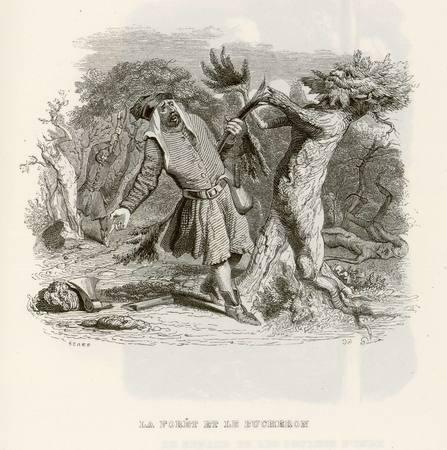 La forêt et le bûcheron