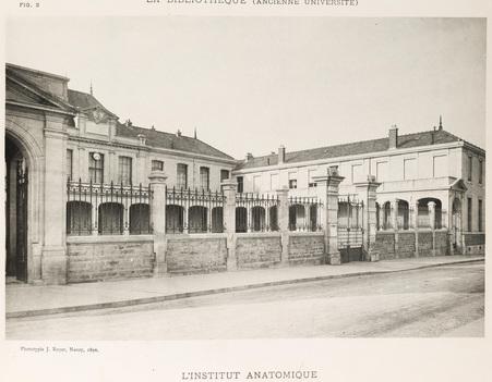 L'institut anatomique