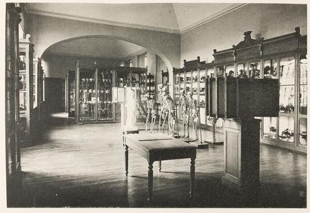 Faculté de médecine, institut anatomique