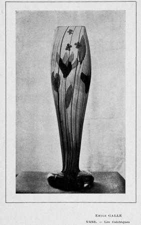 Vase : les colchiques