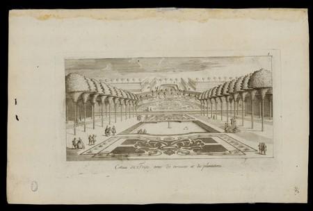 Coteau de Fristo orné de terrasses et de plantations
