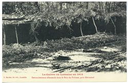 Retranchements allemands dans le bois du Fréhaut, près d'Hériménil  La Gue…