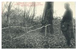 Tombe d'un Sous-Lieutetant du 23e Chasseurs Alpins dans la forêt de Rehain…