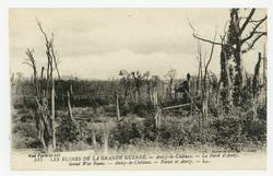 Les ruines de la Grande Guerre. Anizy-le-Château. La Forêt d'Anizy. Great …