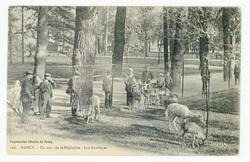 Nancy : un coin de la Pépinière, les Antilopes