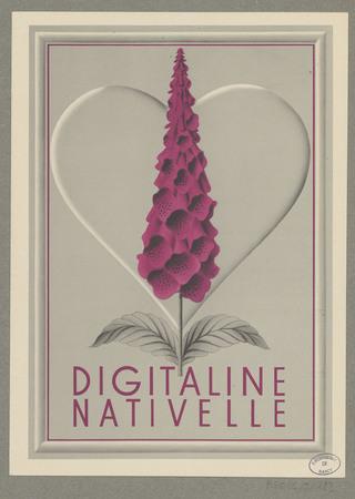 Digitaline Nativelle