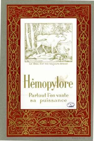 Hémopylore