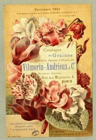 Catalogue de graines
