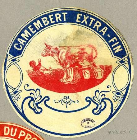 Camembert extra-fin