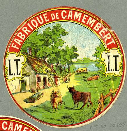 Fabrique de camembert