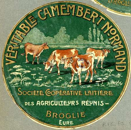 Véritable camembert normand