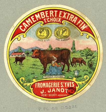 Camembert extra fin