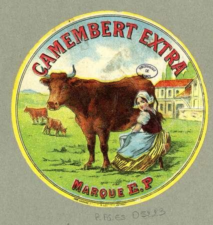 Camembert extra