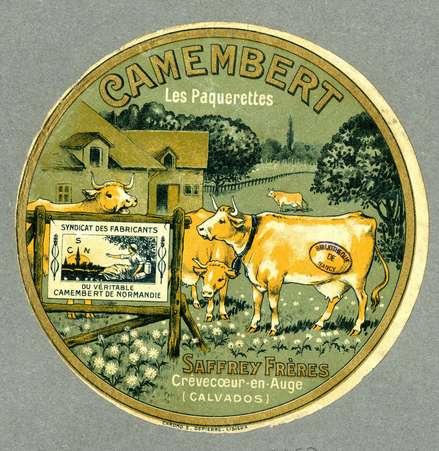 Camembert les paquerettes
