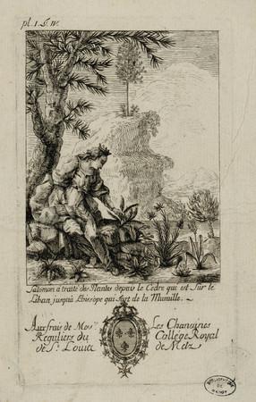 Salomon a traité des plantes depuis le cèdre qui est sur le Liban jusqu'à …