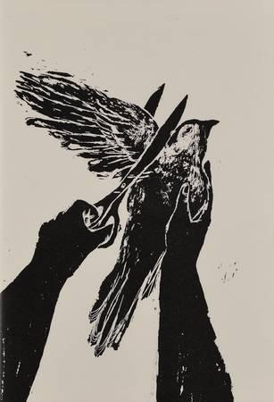 L'oiseau meurtri