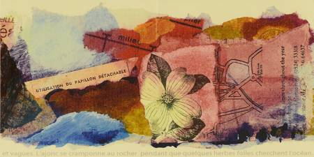 Une page de peinture et de collage de ticket et plante