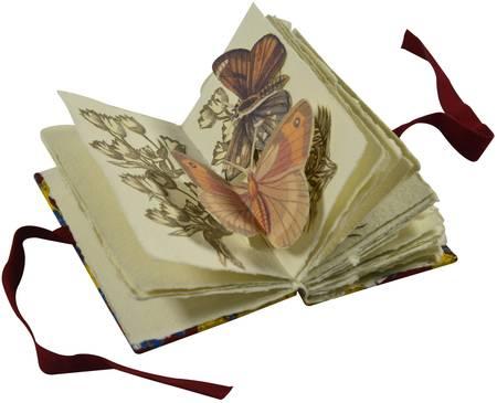L'Herbier des papillons