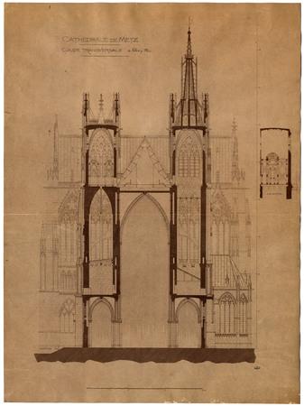 Cathédrale de Metz. Coupe transversale
