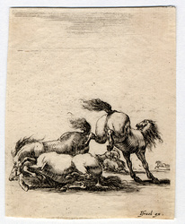 Divers exercices de cavalerie: Combat de plusieurs chevaux