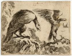 Divers animaux: Un aigle et un aiglon tournés vers la droite