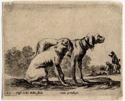Divers animaux: Deux chiens de chasse tournés vers la droite