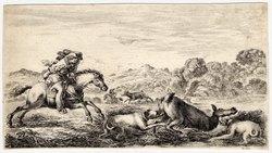 Chasse à différents animaux: La biche dans un marais arrêtée par deux chi…
