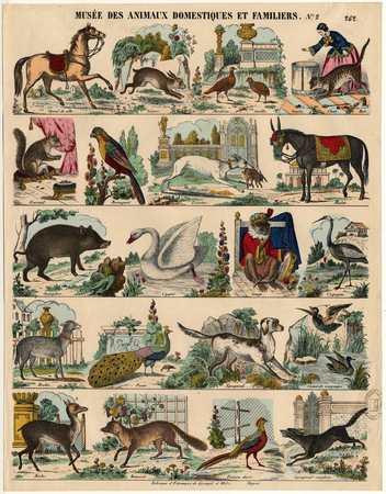 Musée des animaux domestiques et familiers
