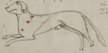 Constellation du Petit chien