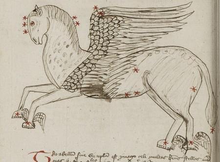 Constellation du Second cheval