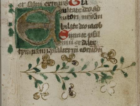 Lettrine E. Bordure inférieure ornée de motifs végétaux