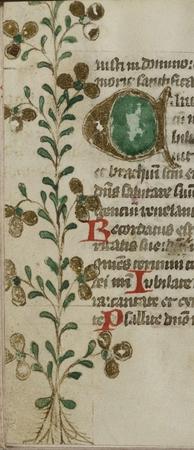 Lettrine A. Bordure ornée de motifs végétaux