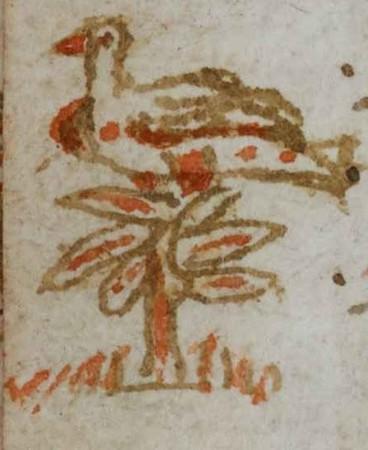 Oiseau posé sur un arbre