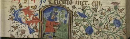 Enluminure illustrant le travail de la vigne