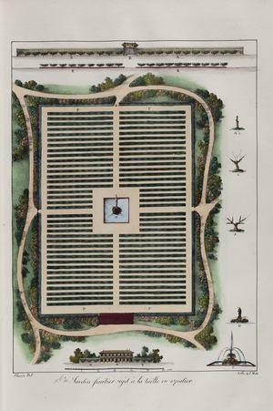 Jardin fruitier sujet à la taille en espalier n°10